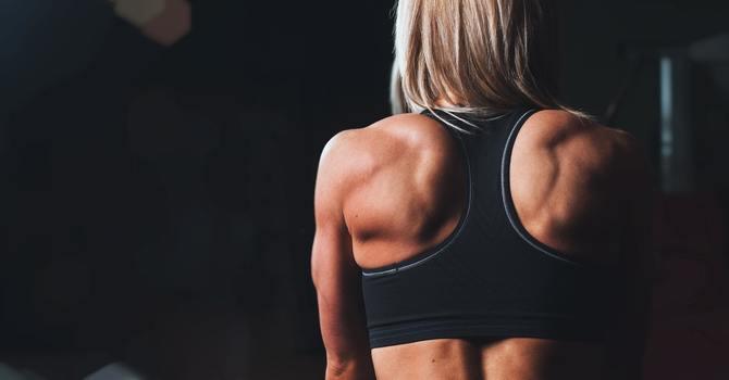 Shoulder And Spine